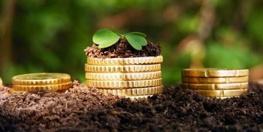 Довідник показників нормативної грошової оцінки сільськогосподарських угідь в Україні станом на 01.01.2021