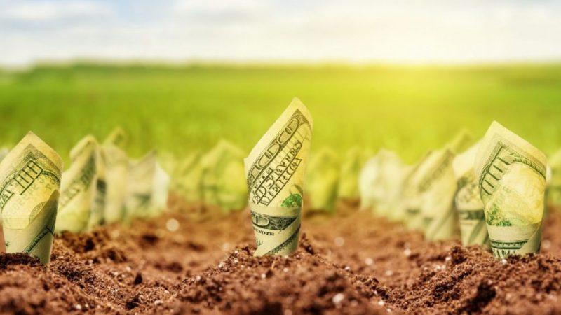 Запуск ринку землі: скільки коштуватиме гектар чорнозему в регіонах
